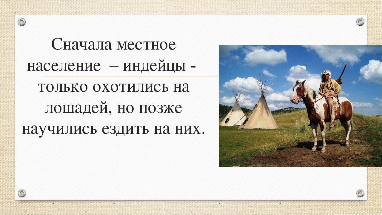 Сначала местное население – индейцы - только охотились на лошадей, но позже н...