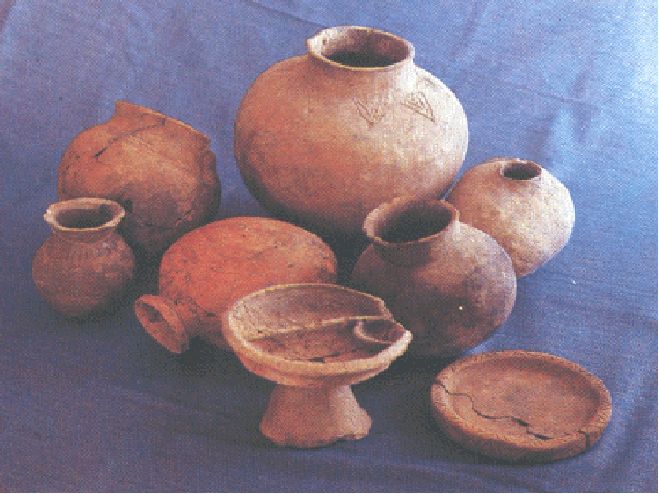 модели посуда древнего человека картинки и названия подтвердили, что