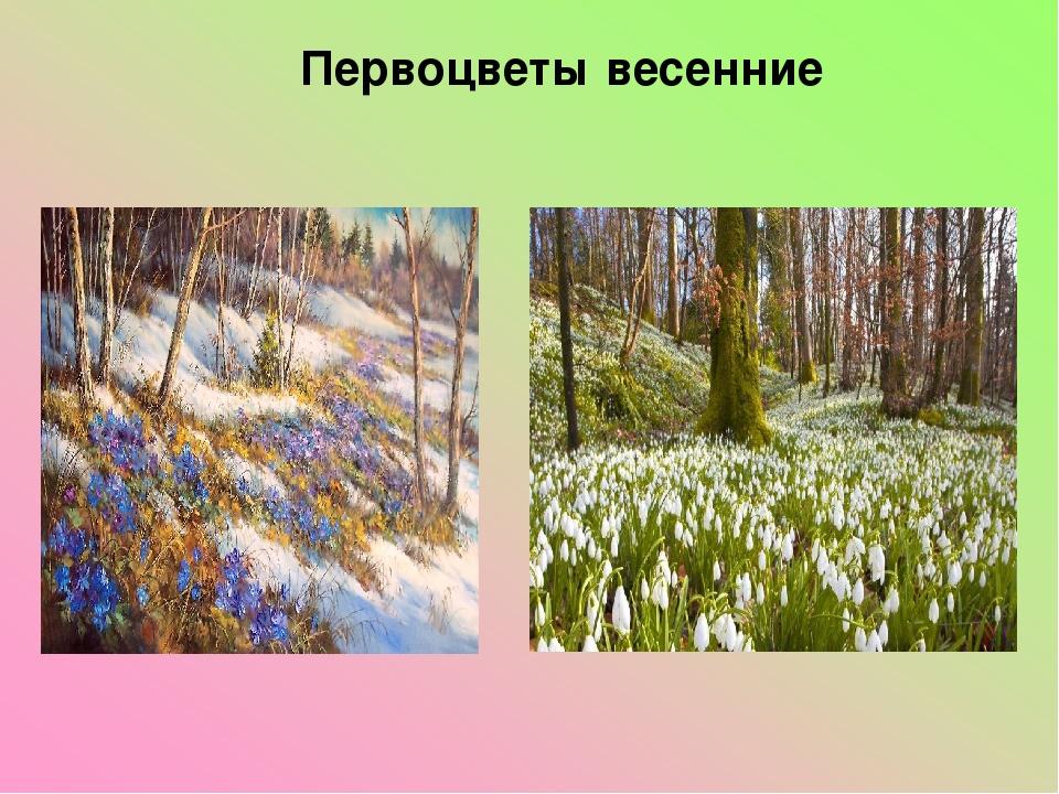 Первоцветы весенние