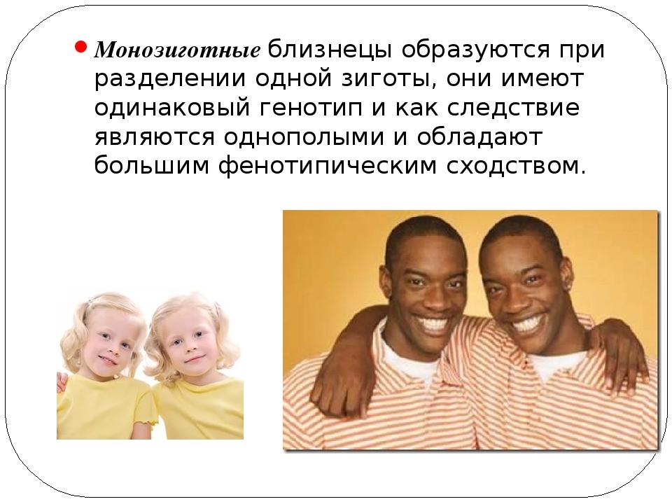 Монозиготные близнецы образуются при разделении одной зиготы, они имеют одина...
