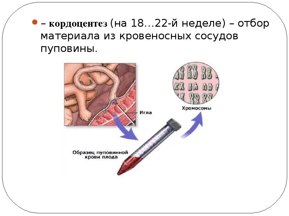 – кордоцентез (на 18…22-й неделе) – отбор материала из кровеносных сосудов пу...