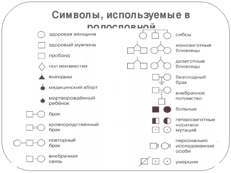 Символы, используемые в родословной