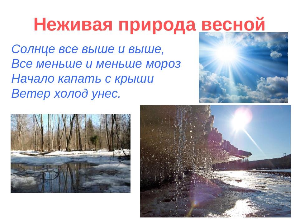 Неживая природа весной Солнце все выше и выше, Все меньше и меньше мороз Нача...