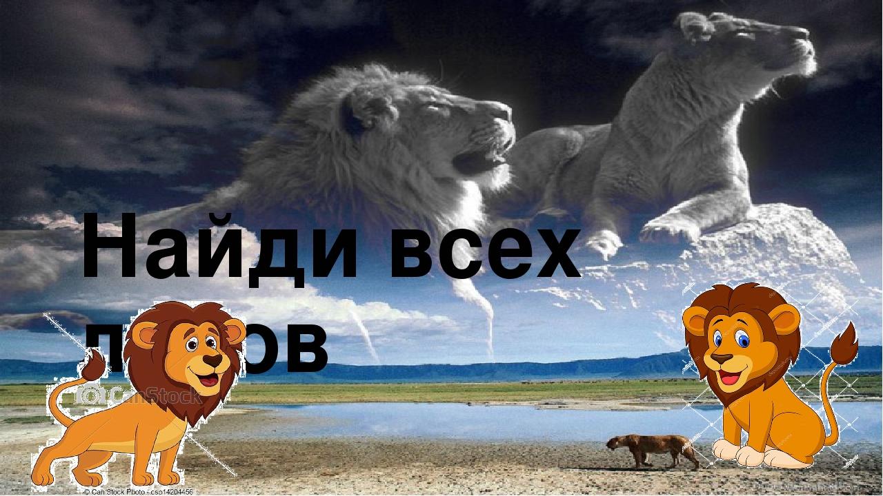 Найди всех львов