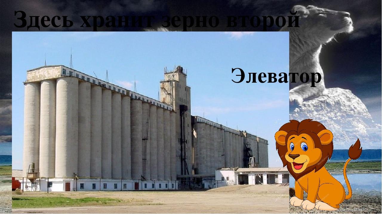 Здесь хранит зерно второй Элеватор