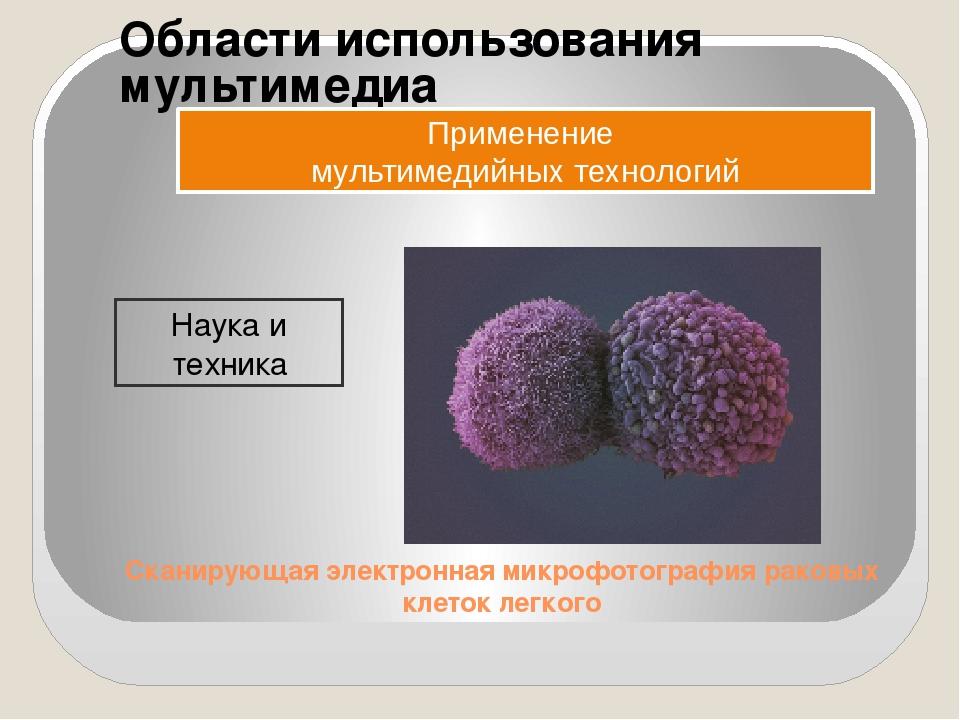 Области использования мультимедиа Применение мультимедийных технологий Наука...