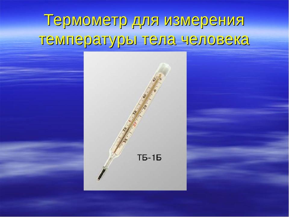 термометром беседа знакомство с