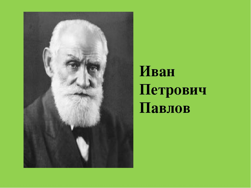 the great discoveries of ivan petrovich pavlov