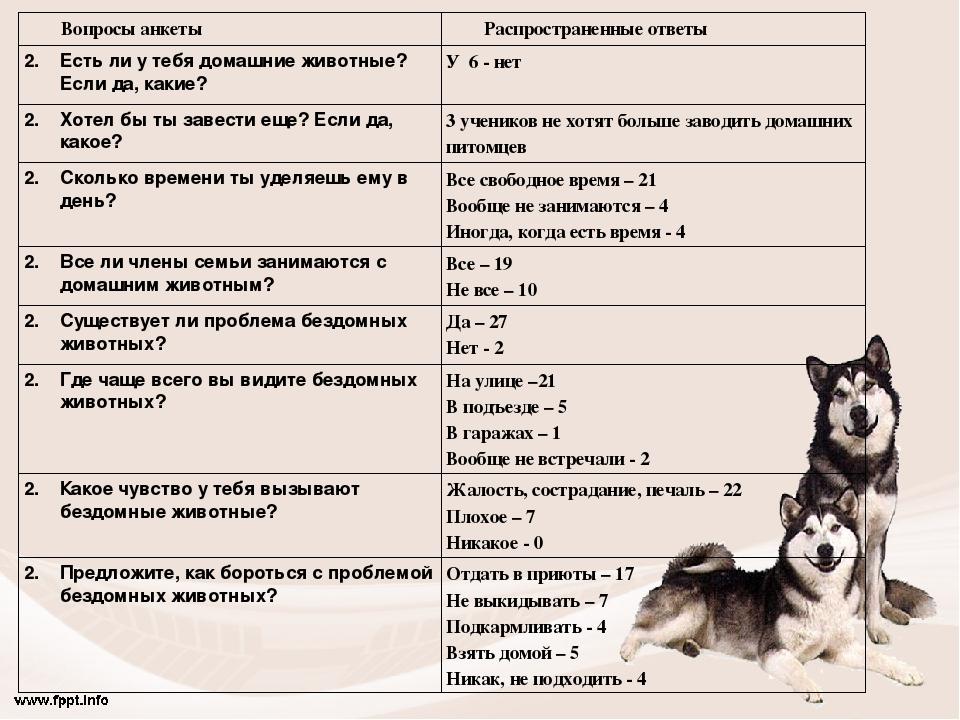 Вопросы анкетыРаспространенные ответы Есть ли у тебя домашние животные? Если...