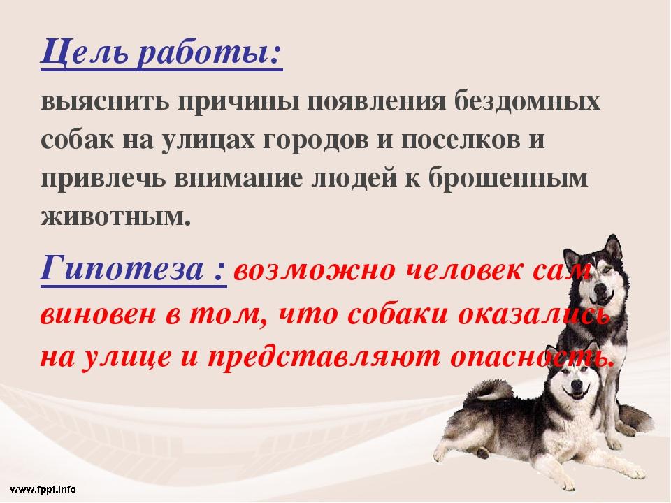 Цель работы: выяснить причины появления бездомных собак на улицах городов и п...