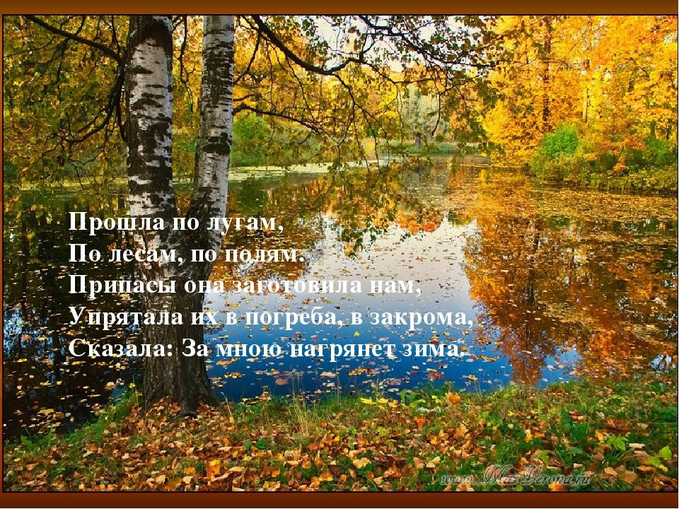 Прошла по лугам, По лесам, по полям. Припасы она заготовила нам, Упрятала их...