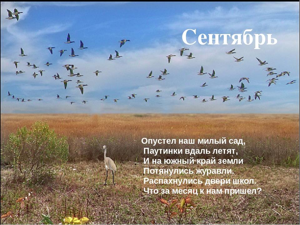 Опустел наш милый сад, Паутинки вдаль летят, И на южный край земли Потя...