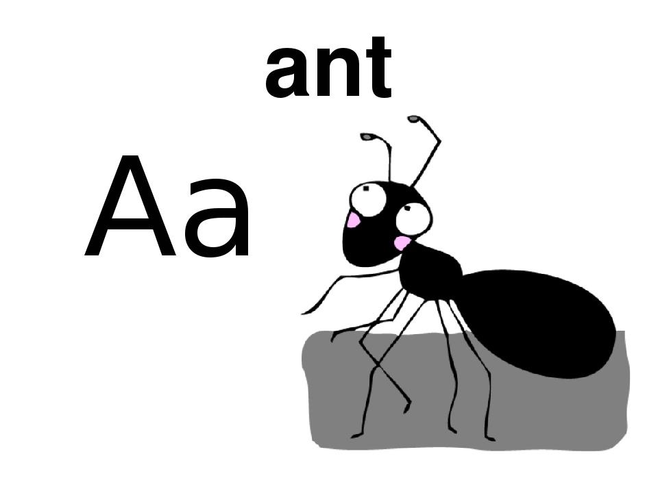 самых муравей на английском картинка залезть лошадь сесть