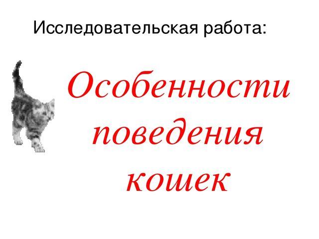Особенности поведения кошек Исследовательская работа: