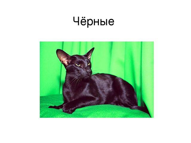 Чёрные