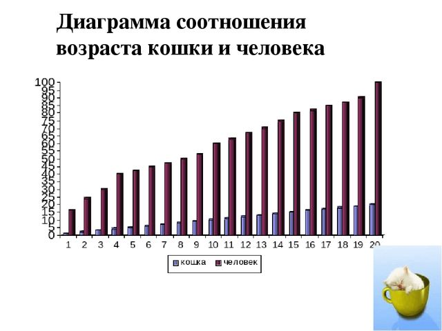 Диаграмма соотношения возраста кошки и человека