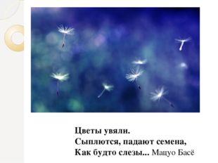 Цветы увяли. Сыплются, падают семена, Как будто слезы... Мацуо Басё