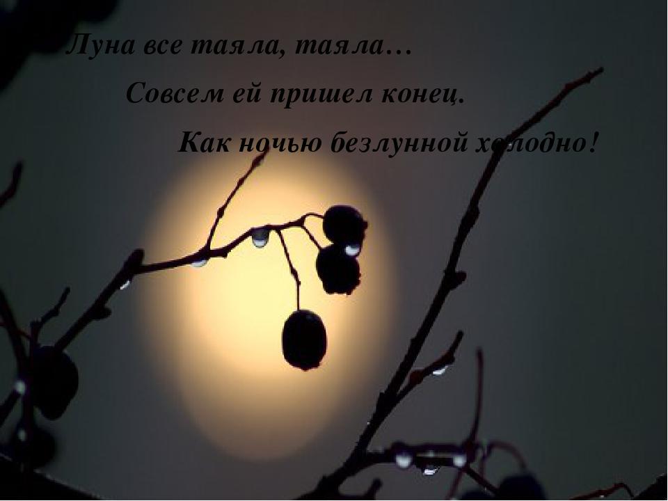 Луна все таяла, таяла… Совсем ей пришел конец. Как ночью безлунной холодно!