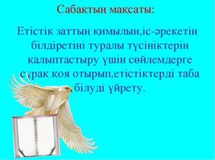 Сабақтың мақсаты: Етістік заттың қимылын,іс-әрекетін білдіретіні туралы түсін