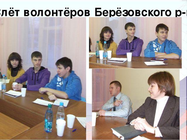 Слёт волонтёров Берёзовского р-на