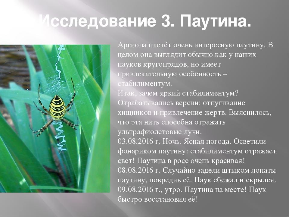 Исследование 3. Паутина. Аргиопа плетёт очень интересную паутину. В целом она...