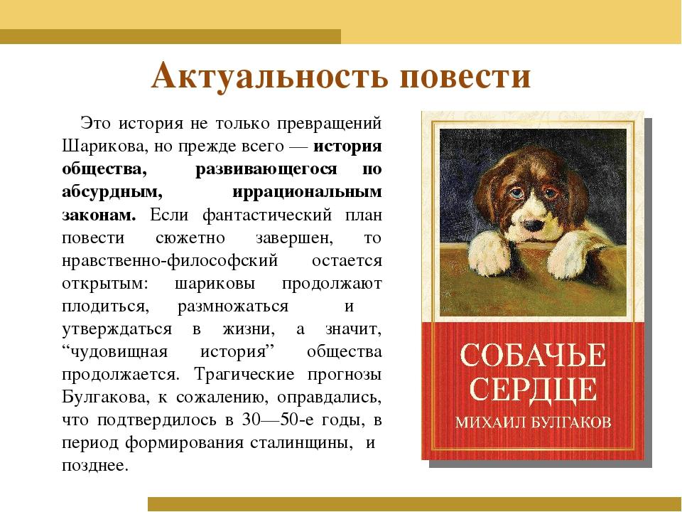 Эссе по роману собачье сердце 8331