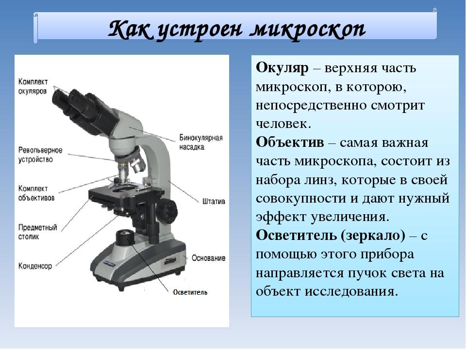 Микроскоп по физике доклад 5789