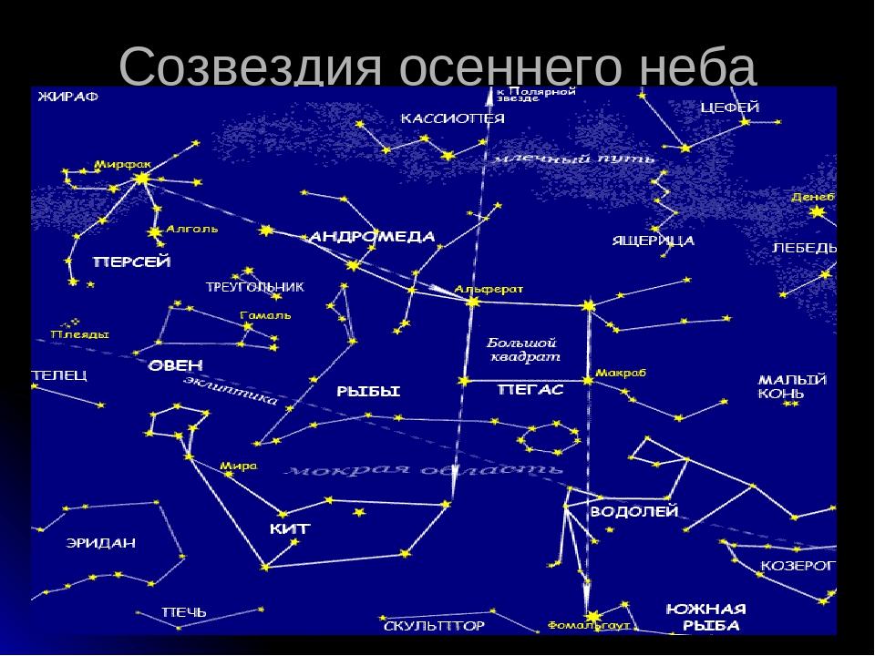 желаю как выглядят созвездия и их названия картинки выходные дни екатеринбурге
