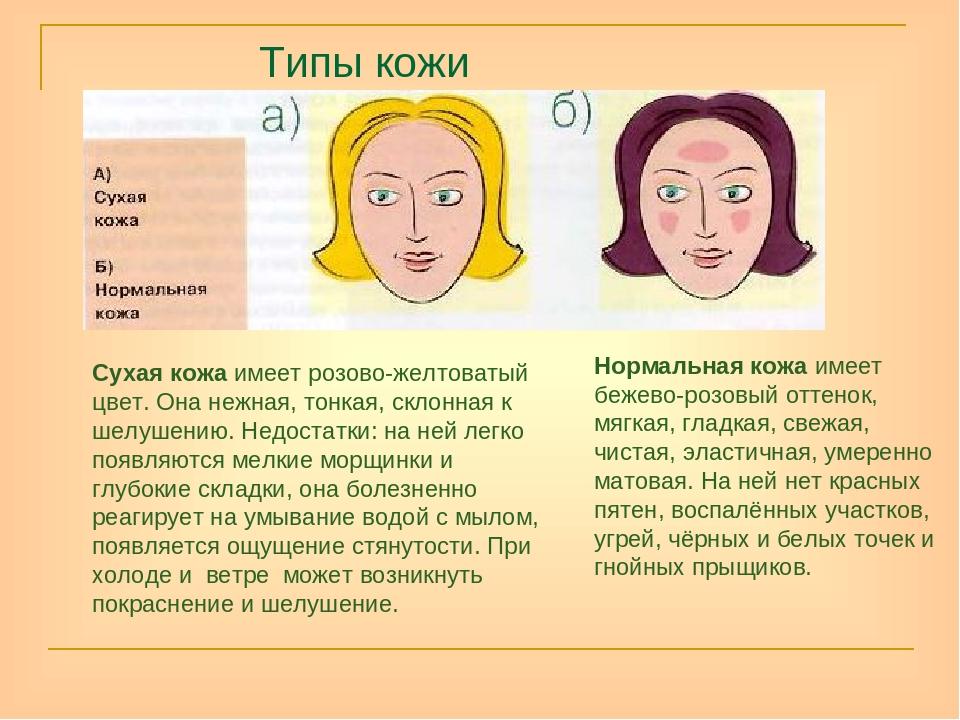 Реферат по теме типы кожи 43