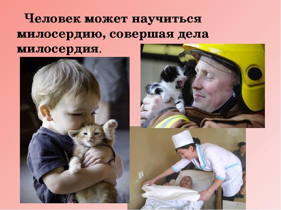 Картинка милосердие и сострадание