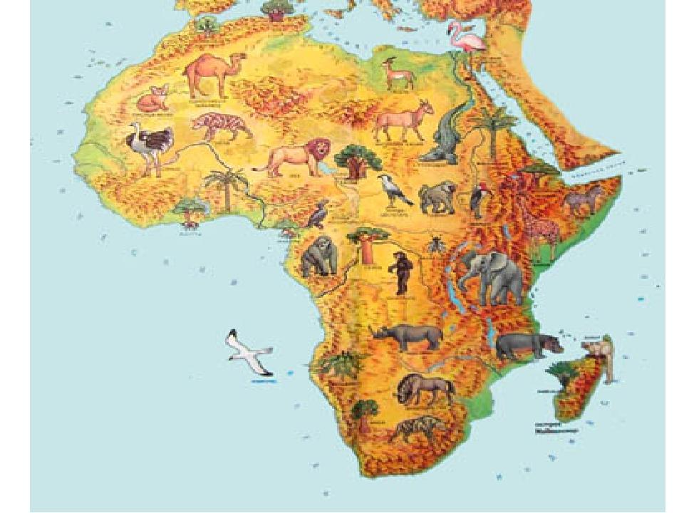 картинки карт африки чьё-то плотское