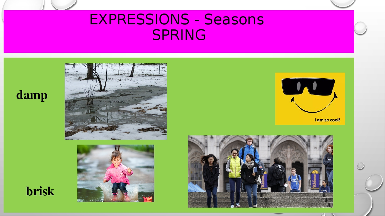 EXPRESSIONS - Seasons SPRING damp							cool brisk