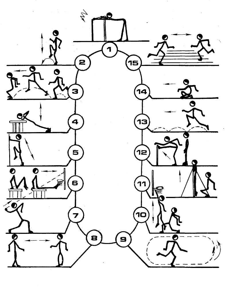 картинки на метод упражнений полевой