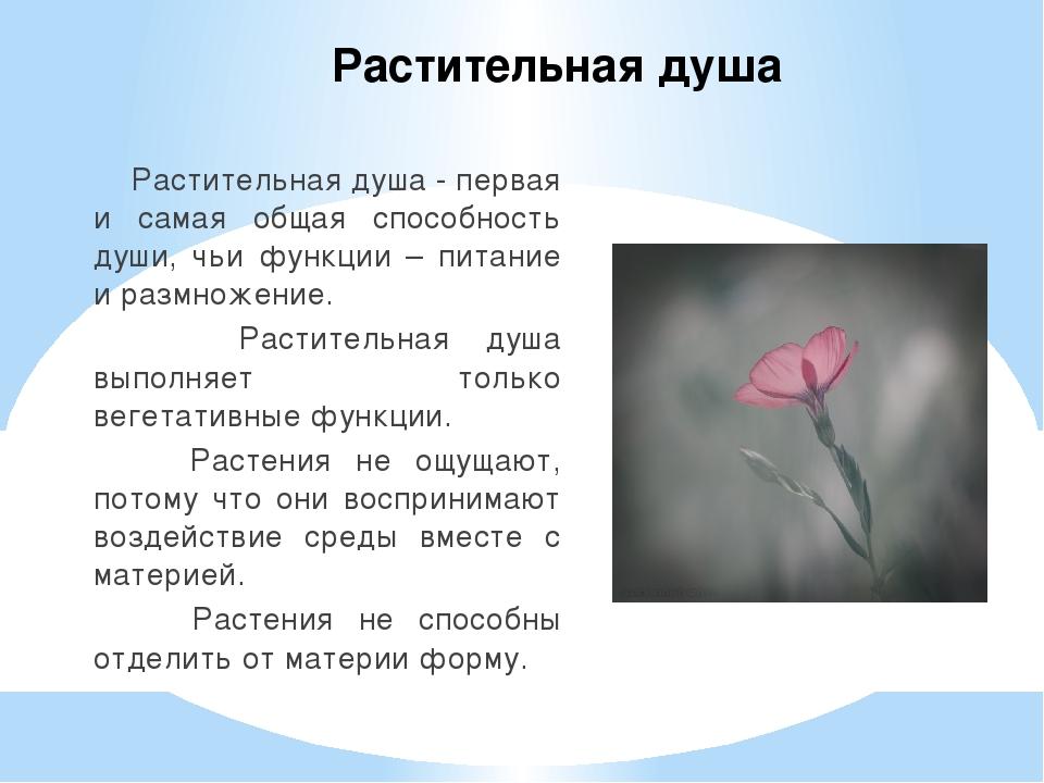 Растительная душа Растительная душа - первая и самая общая способность души,...