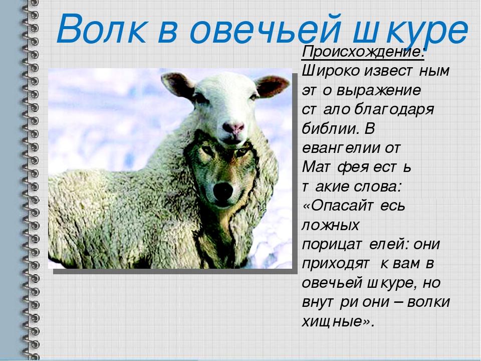В и в одеждах овчих называл