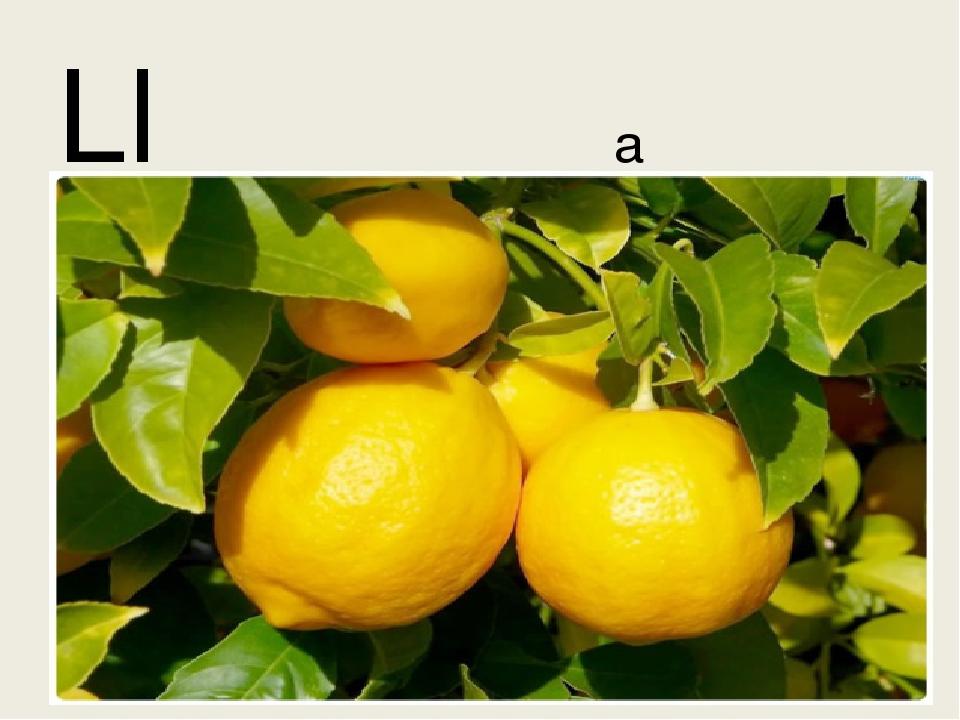 Ll a lemon