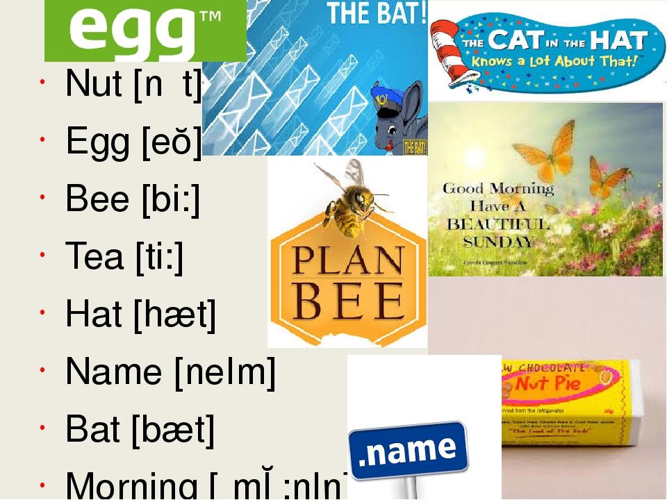 New words Nut [nʌt] Egg [eɡ] Bee [bi:] Tea [ti:] Hat [hæt] Name [neIm] Bat [b...