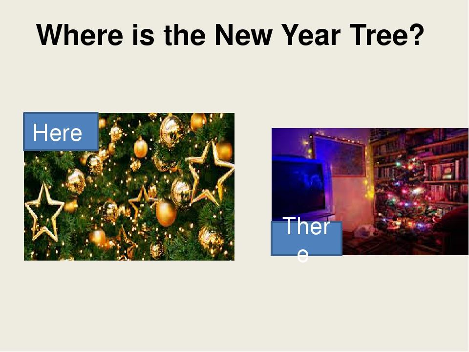 Where is the New Year Tree? Here There