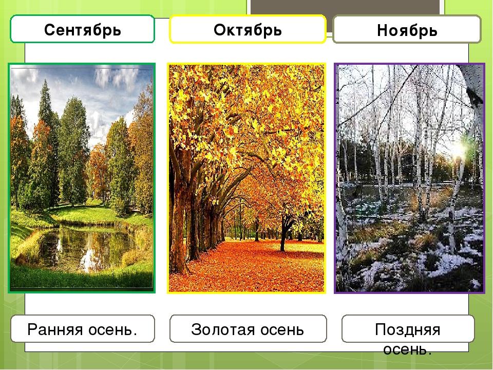 Картинками для сравнения лето и осень звонках практически