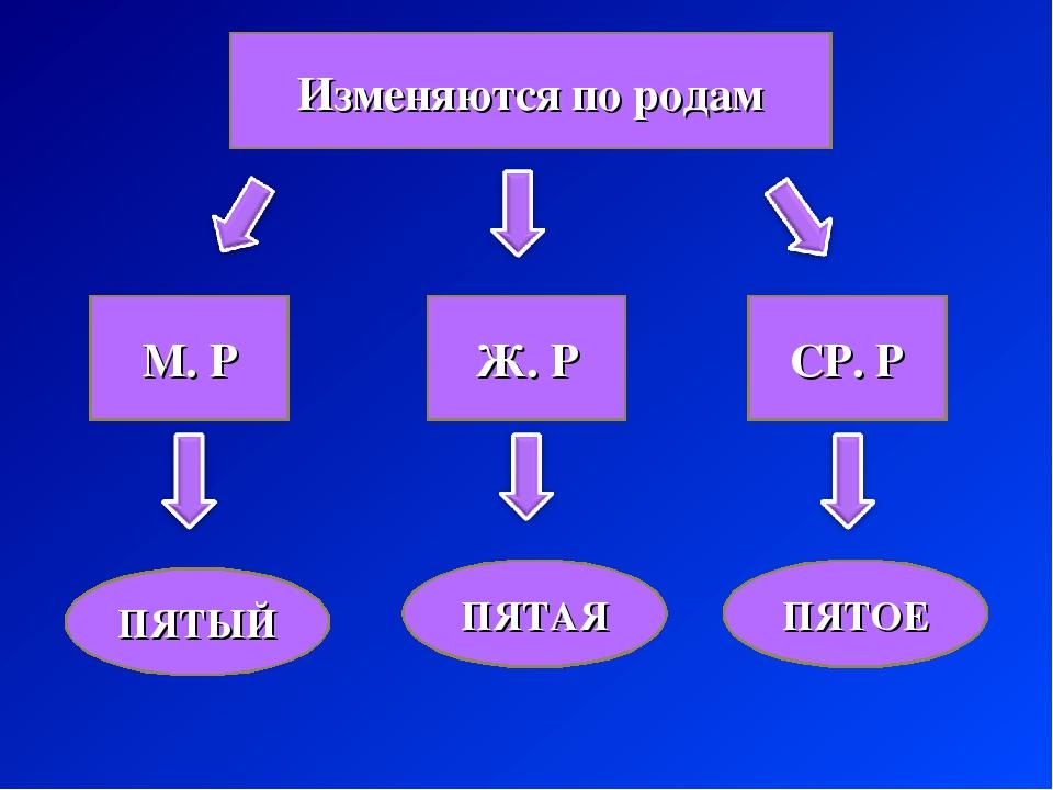 Изменяются по родам М. Р Ж. Р СР. Р ПЯТЫЙ ПЯТАЯ ПЯТОЕ
