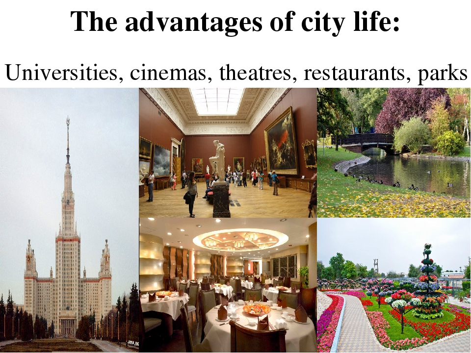 the advantages of city life The advantages and disadvantages of living in a city hostels offices there is electricity actually the city life is more comfortable then the village life communication cinemasnowadays the people think the city life is better than village life.