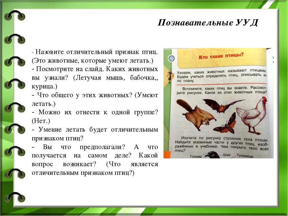 Познавательные УУД - Назовите отличительный признак птиц. (Это животные, кото...