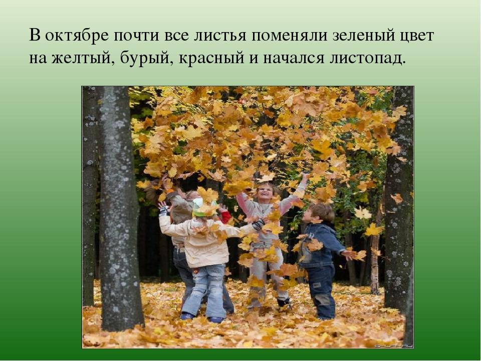 В октябре почти все листья поменяли зеленый цвет на желтый, бурый, красный и...