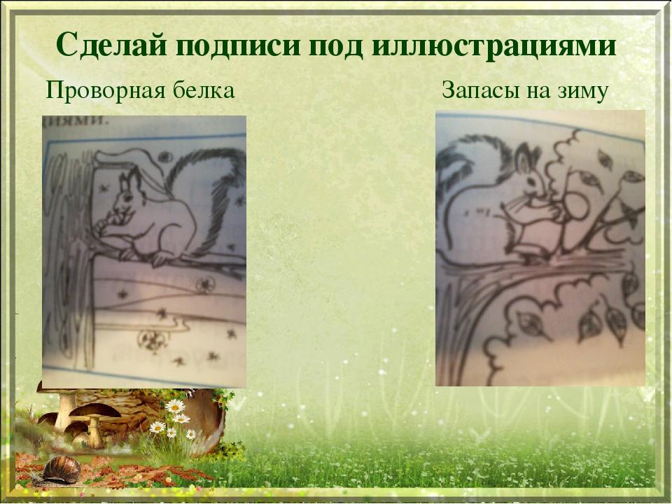 Сделай подписи под иллюстрациями Проворная белка Запасы на зиму