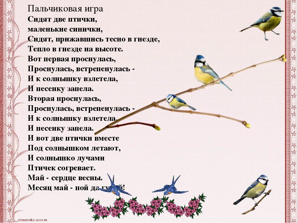 Запела птицей весна наркология курсы