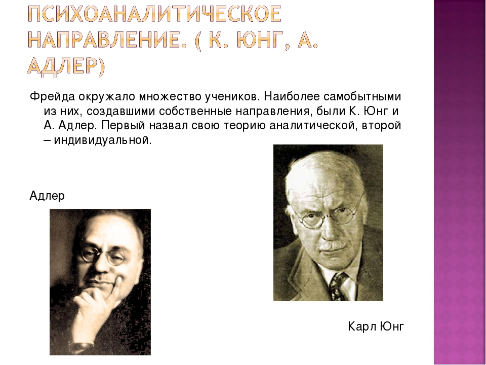 theoretical positions of jung adler and freud 2 essay
