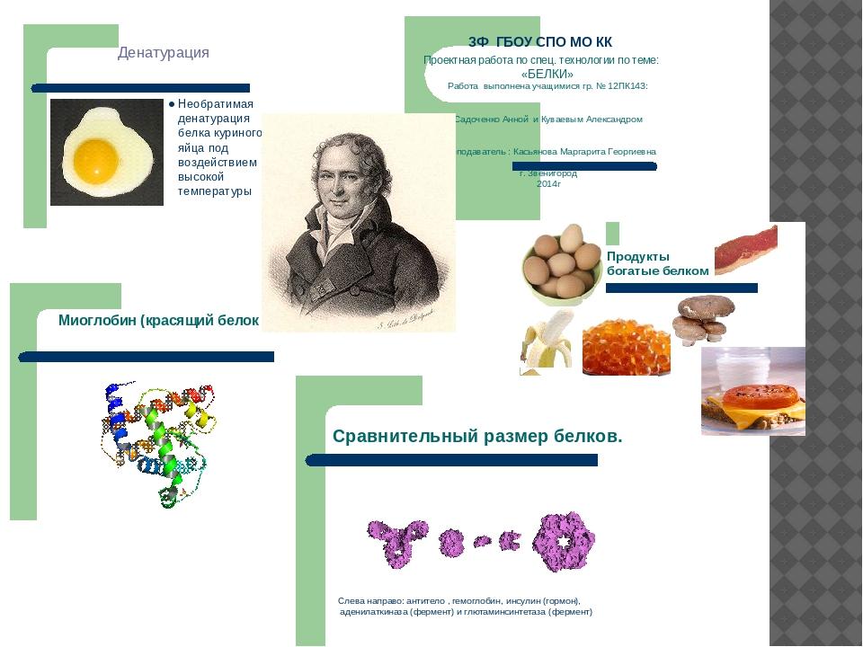 Результаты исследования обучающиеся оформляют в виде рефератов, мультивидеоп...