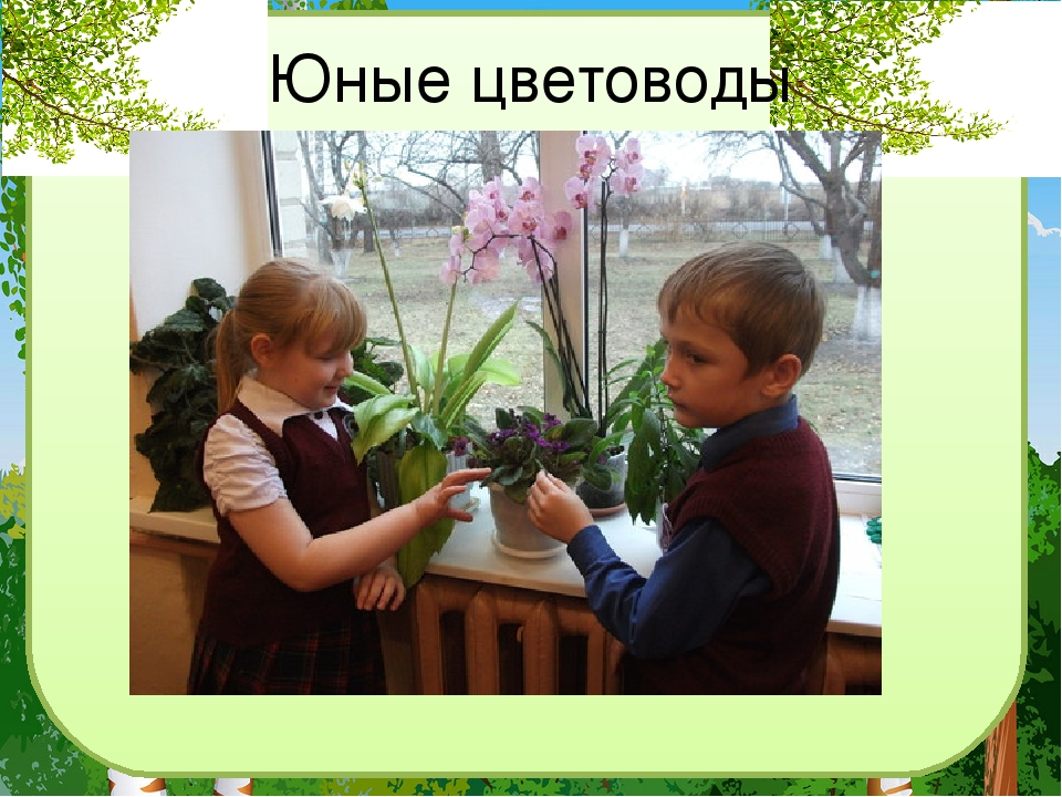 Юные цветоводы