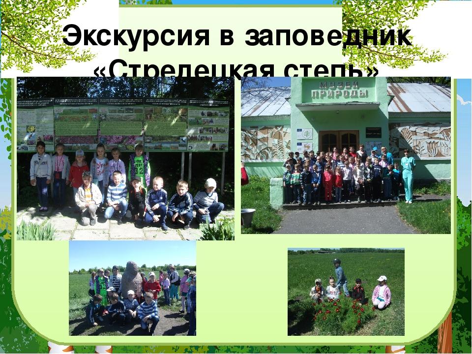 Экскурсия в заповедник «Стрелецкая степь»