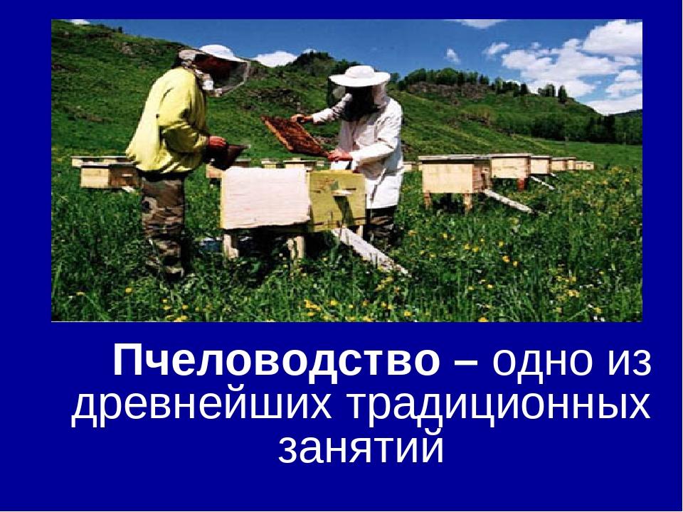 Пчеловодство – одно из древнейших традиционных занятий
